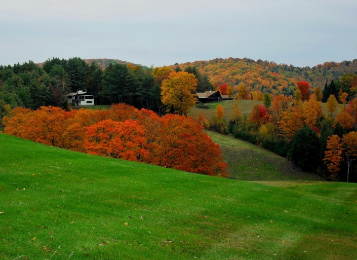 The stunning fall foliage of Vermont.