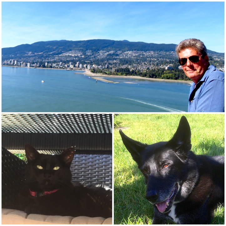 Looking forward to spending the next year discovering British Columbia and spending time with these two sweet seniors Leo and Blu.